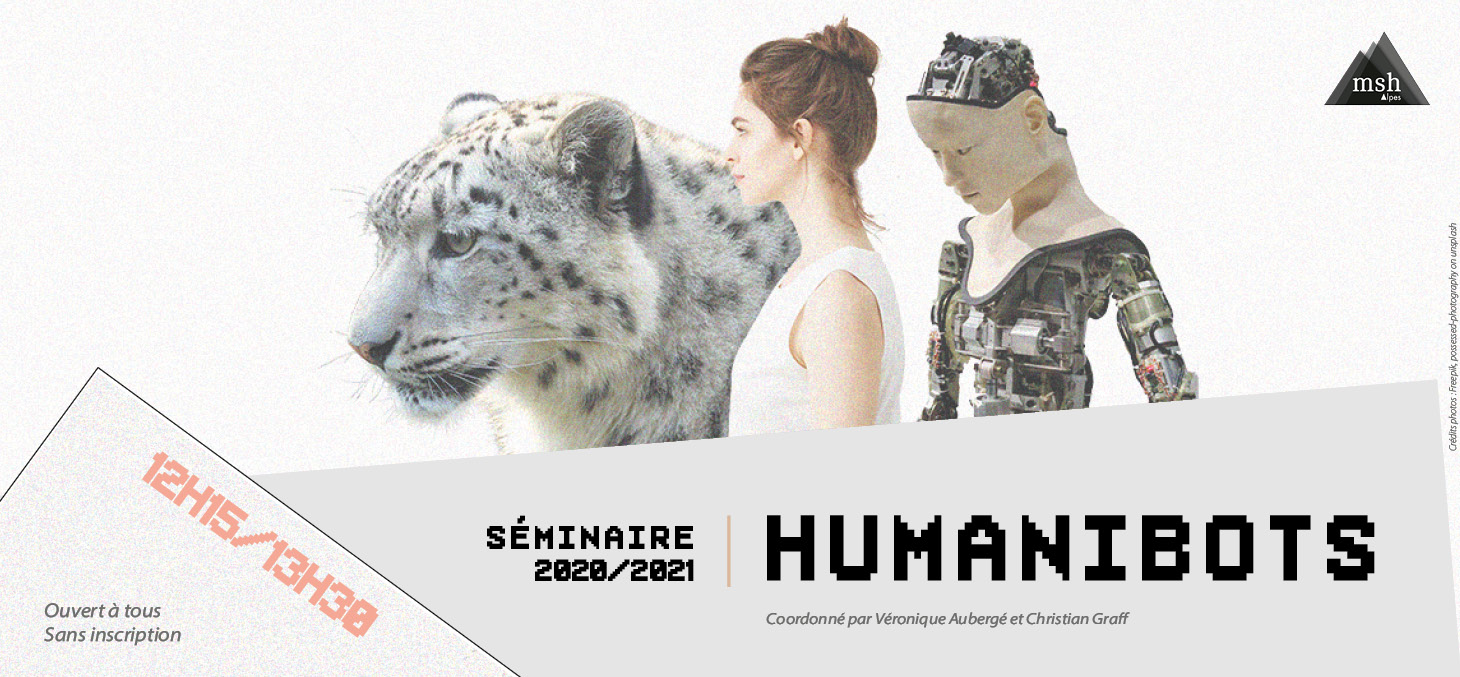 2020-2021_banniere_generale_humanibots.jpg